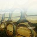 三菱商事、福島にてワイン醸造所を建設-復興支援の一環として