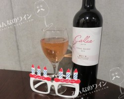 赤ワインにキムチが合うかもしれない@チキチキお誕生日会