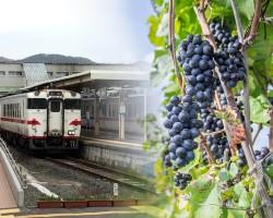 三陸の神田葡萄園、ワイン醸造を開始