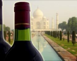 インドで高まるワイン人気、ワインツーリズム