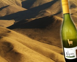 ワイン輸入量、チリ産が1位に!