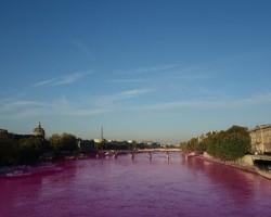 フランスのワイン生産業者、輸入ワインを廃棄