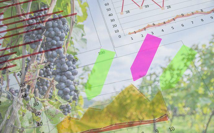 サントリーワイン、ビッグデータ活用で日本ワイン増産を目指す
