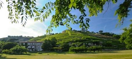 【5月19日】予約不要の南仏ワイン試飲会!北ローヌのビオワインを楽しもう