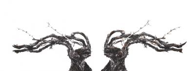 """""""視覚芸術の魔術師""""と""""最古のシャンパーニュメゾン""""のコラボ作品が『KYOTOGRAPHIE 京都国際写真祭 2019』にて日本初公開"""