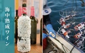 南三陸のワイナリー設立を応援しよう!南三陸のワインがもらえるクラウドファンディング開始