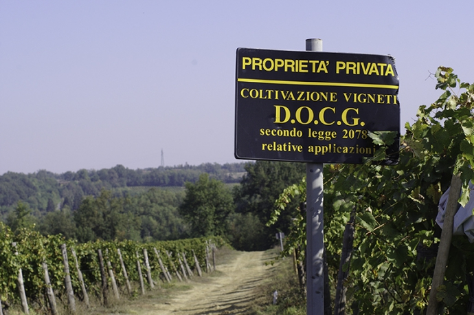 イタリアワイン旅行をリモート体験!ワイン付きマガジン「月刊DOCG」全バックナンバープレゼントキャンペーン