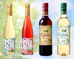 「気軽に楽しむ♪エシカルライフ」ワインを楽しみながら、自分らしいスタイルで始めてみませんか?