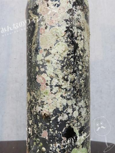 サブリナアクト22016