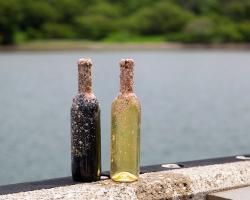 『小網代湾海底ワイン熟成プロジェクト』に京浜急行電鉄が本格サポート開始